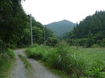 P1100462林道・前方にとっつい山.JPG