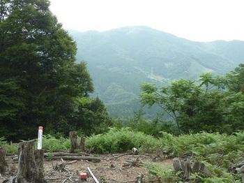 P1100545地籍図根三角点・西山.JPG