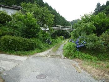 P1100568林道入口.JPG