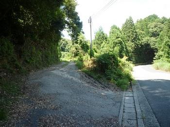 P1100733林道出口(逆方向).JPG