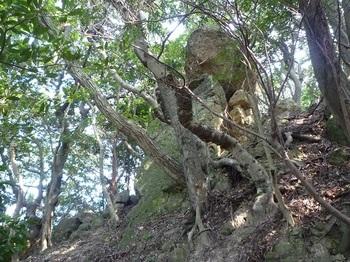 P1100996重ね岩.JPG