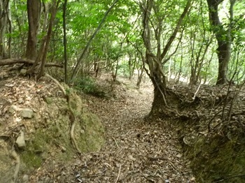 P1110061掘割り状の山道.JPG