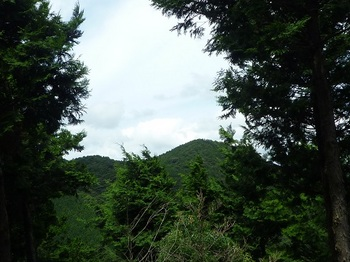 P1110159樹間に京ノ山.JPG