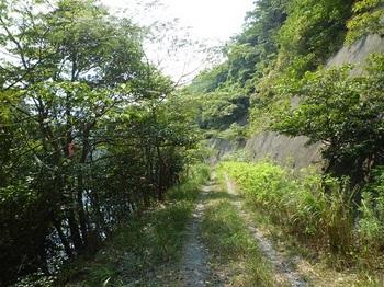 P1110363林道面河内線.JPG