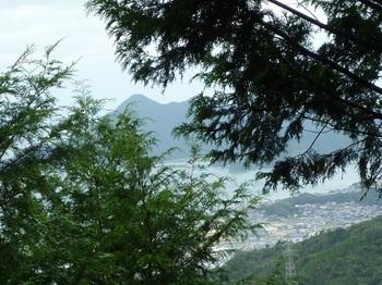 P1110432樹間に青海島高山.JPG