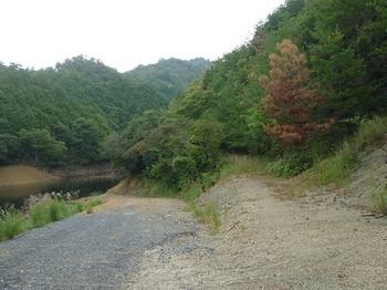 P1110474林道分岐.JPG