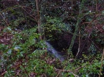 P1110479小滝.JPG