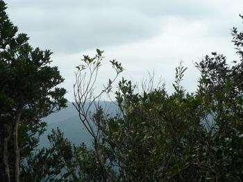 P1110506ピークから東方向の樹間展望.JPG