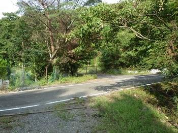P1110571林道浅江線へ出る.JPG