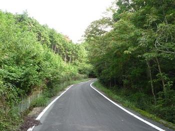 P1110572林道浅江線.JPG