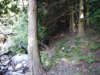 P1110671沢と植林沿いに山道.JPG