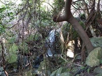 P1110673数mの小滝.JPG