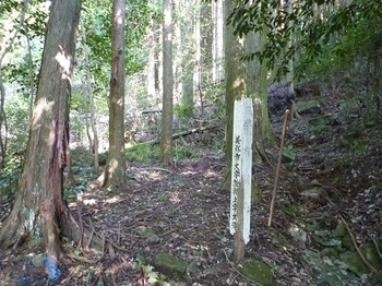 P1110677木柱「県有○○」.JPG