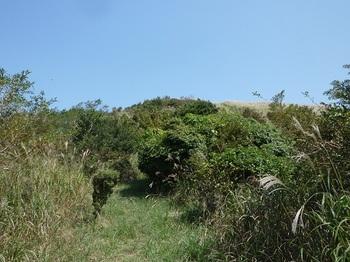 P1110717やや草被りの主稜線.JPG
