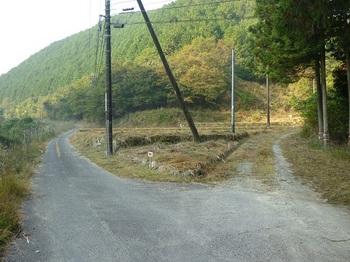 P1120071林道入口.JPG
