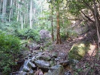P1120105沢沿いの踏み跡.JPG