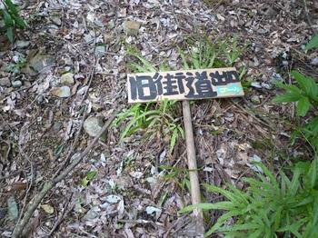 P1120192道標.JPG