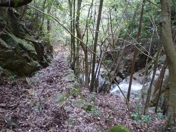 P1120325滝沿いの石垣道.JPG