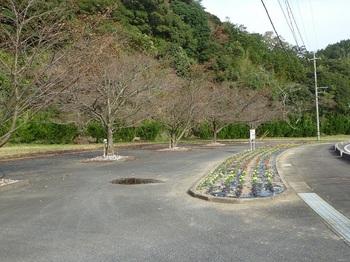 P1120336中の瀬花壇.JPG