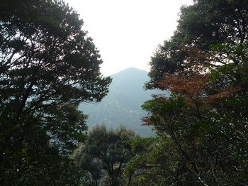 P1120508 樹間の展望・400mピーク.JPG