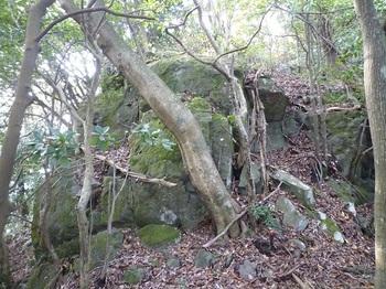 P1120523岩.JPG