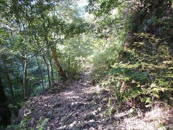 P1120615石の多い林道.JPG
