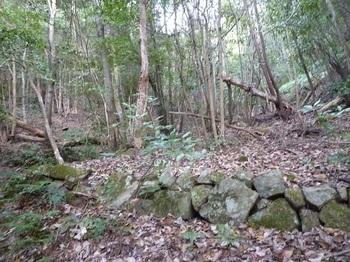 P1120646石垣の平坦地・林道も終わる.JPG