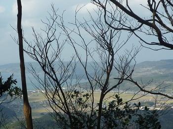 P1120911北西側の樹間展望.JPG