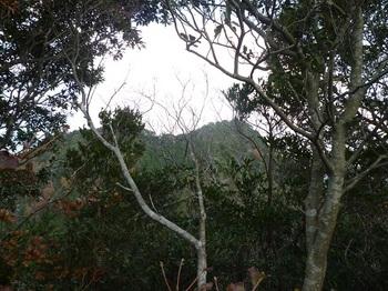P1120913北東方向に熊野岳.JPG