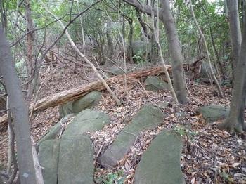 P1120989石が散在する尾根.JPG