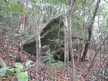 P1120995岩.JPG