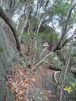 P1120999大岩上方.JPG