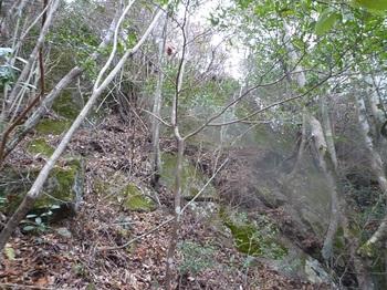 P1130013屹立する岩(上方).JPG