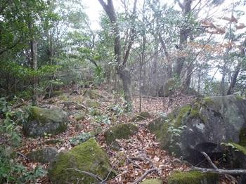 P1130069石が散在する尾根.JPG