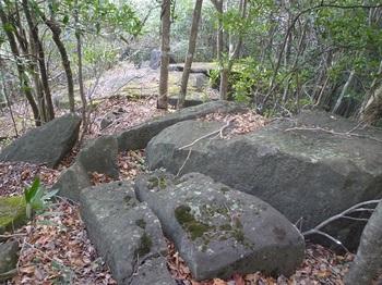 P1130078大岩.JPG