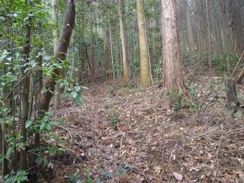 P1130146山道.JPG