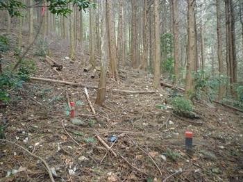 P1130148トラバース気味の山道.JPG