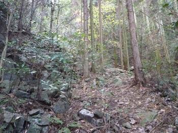 P1130151角石の多い山道.JPG