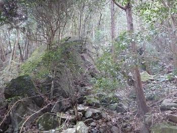 P1130152大岩.JPG