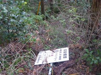 P1130212公社造林看板.JPG