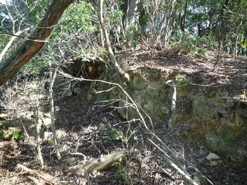 P1130434山頂部の溝(西側).JPG