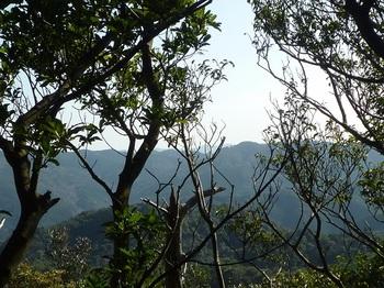 P1130451樹間展望(南東側).JPG
