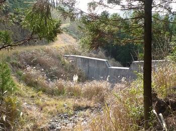 P1130499堰堤・左は管理道.JPG