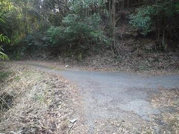 P1130733林道分岐.JPG
