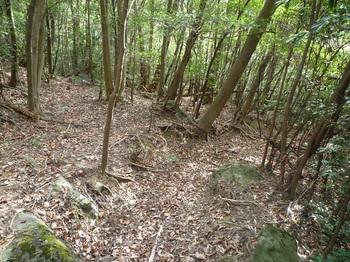P1130832溝状の山道.JPG