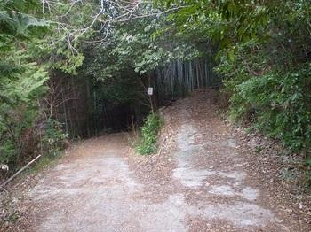 P1130875コン舗装林道右へ.JPG