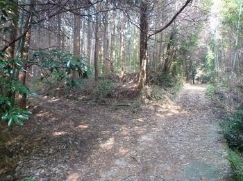 P1130877林道分岐(左へ).JPG