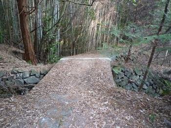 P1130973コン橋.JPG