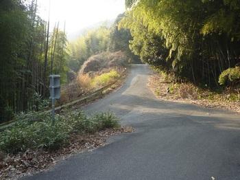 P1130977再び県道へ出る.JPG