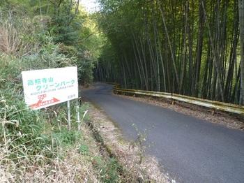 P1130978分岐のグリーンパーク道標.JPG